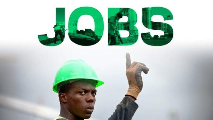 jobs-umbrella-fund-illustration