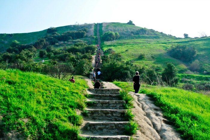 Baldwin Hills Scenic Overlook (La Sentinel/ Brian W. Carter)