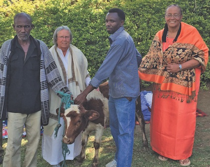 Elder Kisoki Lekujita (left) accepts the gift of a cow from Jean Dye, a center member, and Mataji.