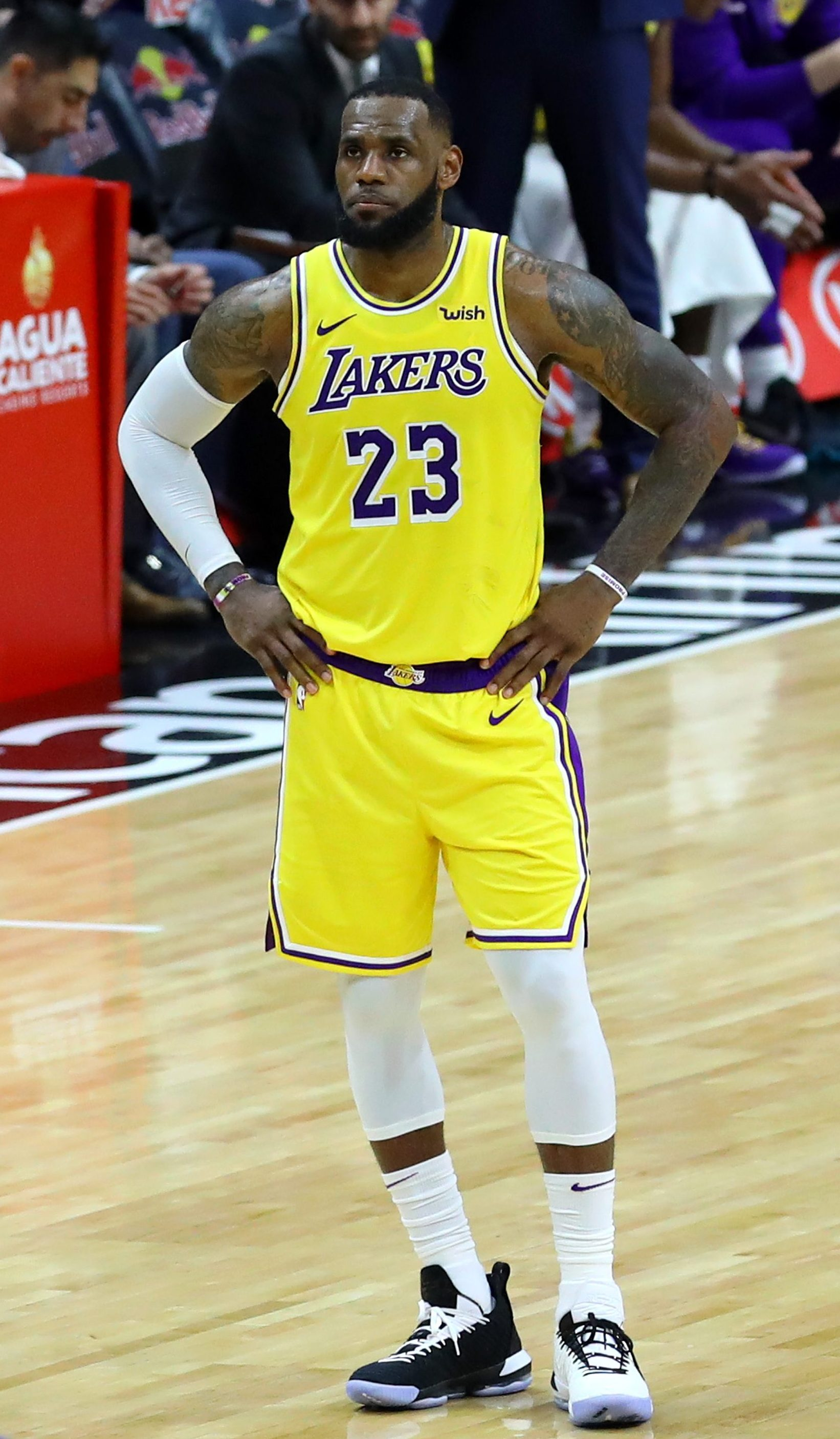 593b8576b LeBron James named captain of the 2019 Western Conference All-Star team in  Charlotte